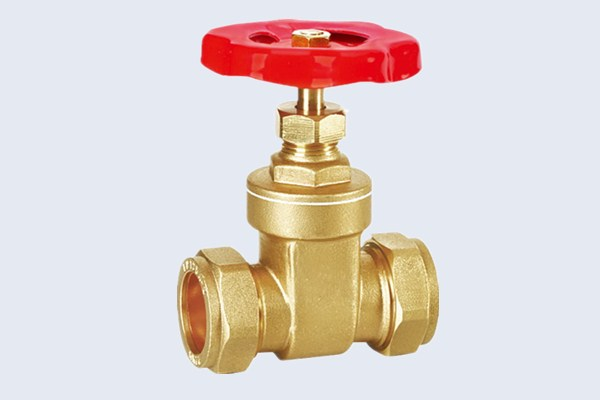 Compression Brass Gate Valve N10121006