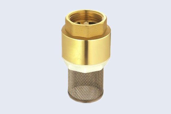 Brass Spring Check Valve with Filter N10131004