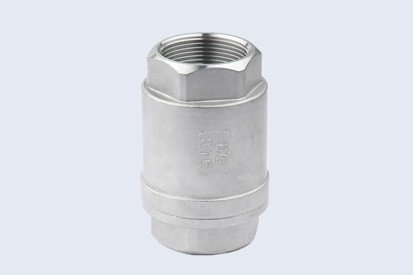 Stainless Steel Spring Check Valve N10212003