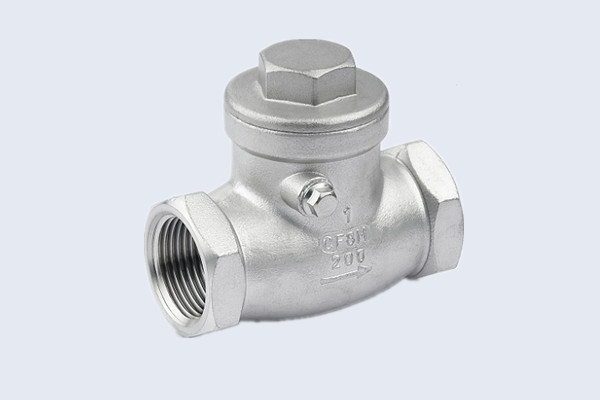 Stainless Steel Swing Check Valve N10212005